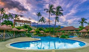 Фотографии Курорты Здания Гавайские острова Плавательный бассейн Пальма Maui город