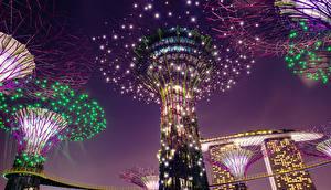 Обои Сингапур Парки Дизайн Электрическая гирлянда Ночные Gardens by the Bay Природа Природа