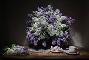 Картинка Натюрморт Сирень Сладости Стол Чашка Цветы