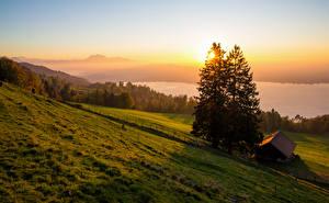 Картинки Швейцария Пейзаж Рассветы и закаты Дома Луга Ель Zugerberg Природа