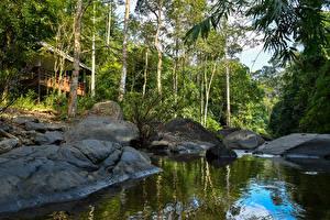 Обои Таиланд Парки Реки Камень Деревья Pala-U Waterfall Природа