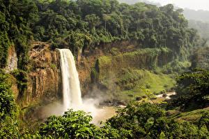 Обои Тропики Водопады Утес Мох Ekom-Nkam Waterfalls  Cameroon
