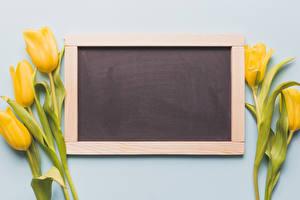 Картинки Тюльпаны Цветной фон Шаблон поздравительной открытки Желтый Цветы