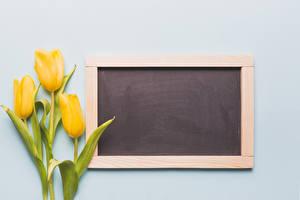 Картинки Тюльпаны Серый фон Шаблон поздравительной открытки Желтый Цветы
