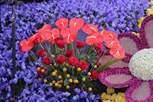 Фотографии США Антуриум Роза Ирисы Хризантемы Калифорния Pasadena цветок