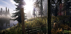 Картинки США Реки Парки Ель Ствол дерева Забор Montana Природа