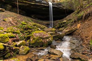 Фото Штаты Водопады Камень Мох Julia Lynn Falls Kentucky Природа