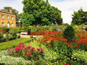Картинка Великобритания Парки Маттиола Кусты Скамейка Chumleigh Gardens Burgess Park Природа