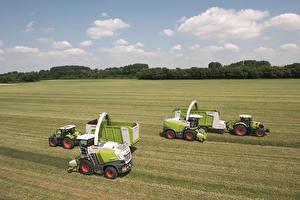 Обои Сельскохозяйственная техника Поля Трактор Claas Arion, Claas Jaguar 860, Claas Jaguar 950, Claas Axion 840 Цветы картинки