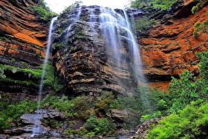 Картинки Австралия Водопады Скала Wentworth Falls Природа
