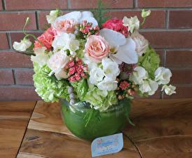 Картинки Букеты Розы Фрезия Гортензия Орхидеи Стенка Ваза Цветы