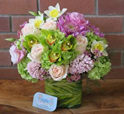 Фотографии Букеты Розы Орхидеи Гортензия Цветы
