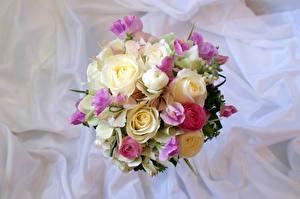 Фотографии Букеты Розы Лютик Цветы