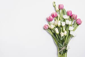 Картинка Букеты Тюльпаны Эустома Серый фон Цветы