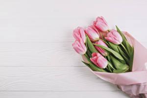 Картинки Букеты Тюльпаны Доски Розовый Цветы