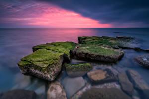 Фотография Болгария Море Рассветы и закаты Камень Мох