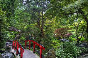 Обои Канада Сады Мосты HDRI Дерево Butchart Gardens Victoria Природа