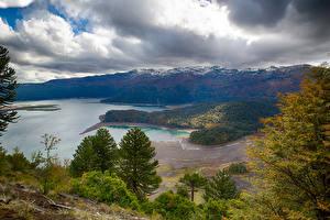 Фотография Чили Озеро Горы Леса Берег Ель Conguillío