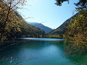 Картинки Китай Озеро Горы Лес Panda Lake Природа