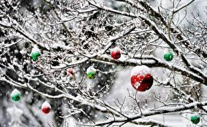 Картинка Рождество Ветвь Снег Шар