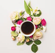 Фотография Кофе Розы Гвоздики Чашка Цветы Еда