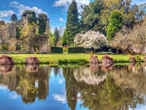 Фотография Англия Замок Парк Пруд Цветущие деревья Газоне Scotney Castle gardens Природа