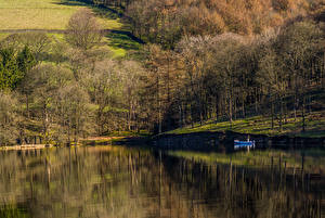 Картинка Англия Парки Озеро Деревья High Peak Derbyshire Природа