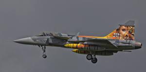 Фото Самолеты Истребители Czech Air Force SAAb JAS39C Gripen 9241