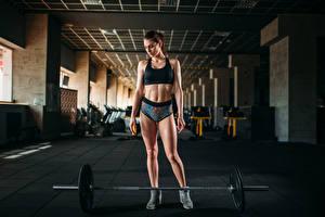 Фотография Фитнес Шатенка Физические упражнения Штанга Живот Девушки Спорт