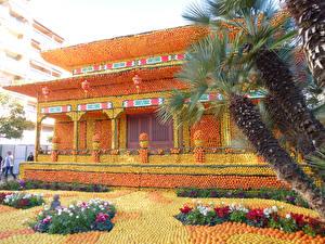 Фотография Франция Парки Здания Апельсин Дизайн Пальм Lemon Festival Menton Природа