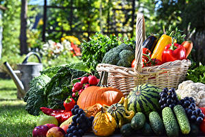 Фотография Фрукты Овощи Огурцы Виноград Арбузы Тыква Корзины Еда
