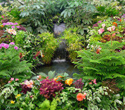 Фото Сады Водопады Кусты Butchart Gardens