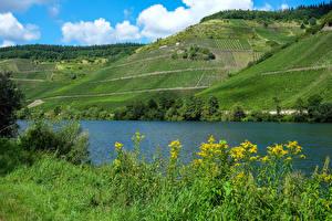 Обои Германия Реки Поля Холмы Moselle Природа картинки