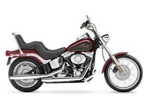 Обои Harley-Davidson Белый фон Сбоку 2007 FXSTC Softail Custom Мотоциклы картинки