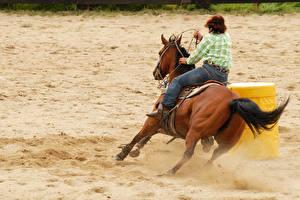 Обои Лошади Мужчины Бег Вид