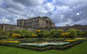 Фотография Здания Парки Газон Кусты Lyme Hall Dutch Gardens