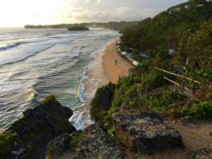 Фото Индонезия Побережье Камни Кустов Yogyakarta Природа