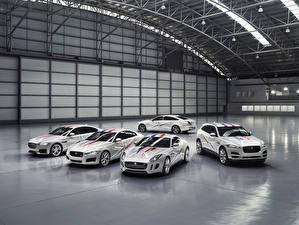 Фотографии Jaguar Белый Металлик Автомобили