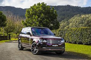 Фото Land Rover Внедорожник Бордовый Металлик 2016-17 SV Autobiography Автомобили