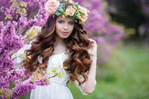 Обои Сирень Розы Волосы Смотрит Шатенка Девушки