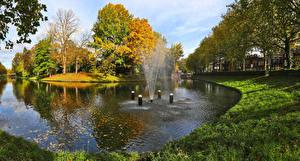 Фотография Нидерланды Осенние Водный канал Деревья Трава Utrecht Природа