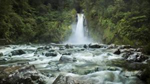 Обои Новая Зеландия Водопады Камень Утес Мох Giants Gate Falls Fiordland Природа