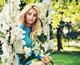 Обои Орхидеи Блондинка Смотрит Качели Девушки