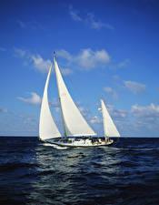 Обои Море Парусные Яхта