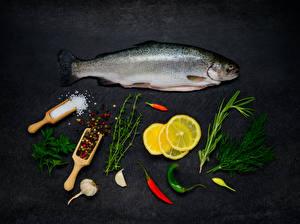 Фотография Морепродукты Рыба Лимоны Укроп Чеснок Перец чёрный Соль