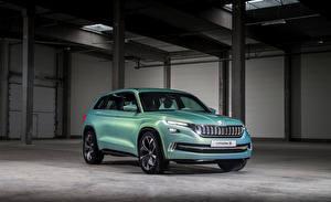 Фотография Skoda Желто зеленый 2016 Vision S Concept авто