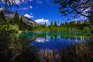 Фотография Швейцария Озеро Горы Леса Crestasee Природа