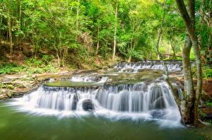 Обои Таиланд Тропики Парки Водопады Деревья Sam lan waterfall Saraburi