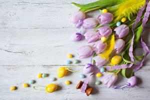 Обои Тюльпаны Пасха Яйца Цветы