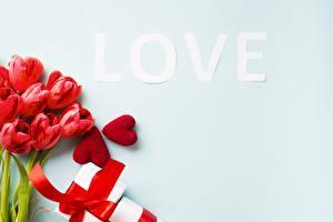 Картинка Тюльпаны Любовь День святого Валентина Цветы